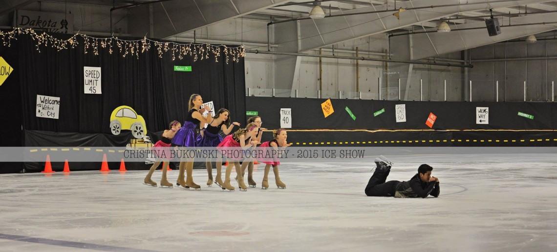 Ice Show 10