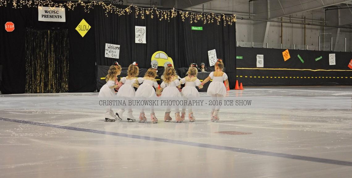 Ice Show 9